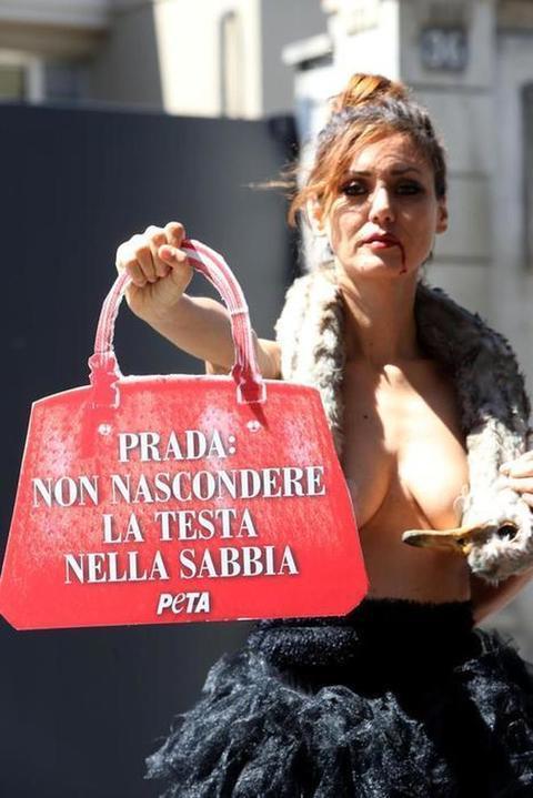 Epa: la protesta contro Prada per dire no al maltrattamento degli animali